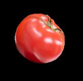 トマト画像